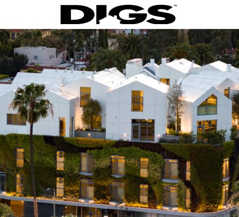 Digs publication
